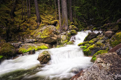 Photograph - North Cascades by Kevin Pate
