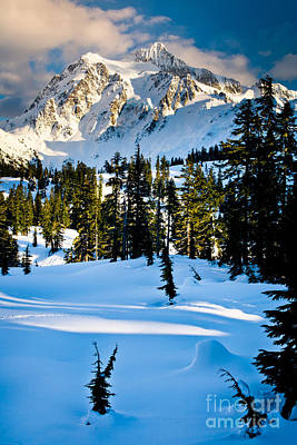 North Cascades Winter Art Print by Inge Johnsson