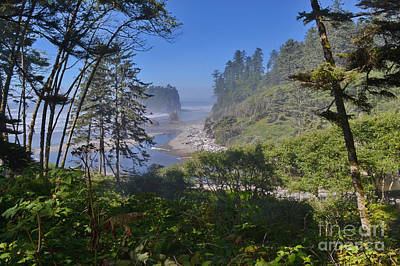 Photograph - North Coast by Ansel Price