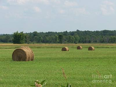 North Country Haystacks Art Print by Kevin Croitz