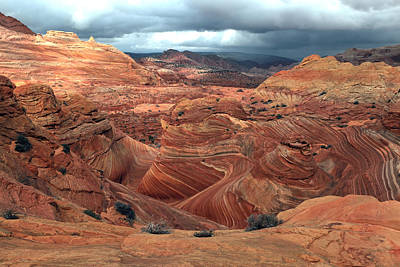 Photograph - North Coyote Buttes by Darryl Wilkinson