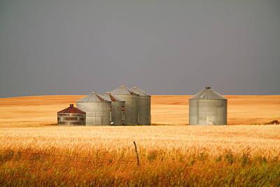 Birds Rights Managed Images - North Dakota Landscape Royalty-Free Image by Jeff Swan