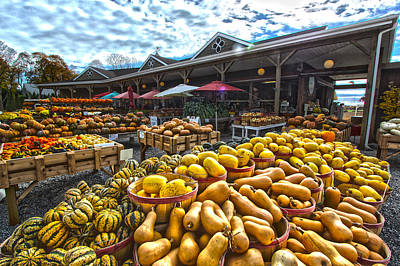 Farmstand Photograph - North Fork Farmstand by Robert Seifert