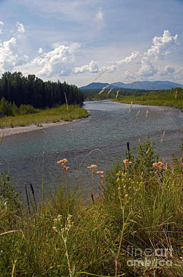 Photograph - North Fork Of The Flathead River by Cindy Murphy - NightVisions
