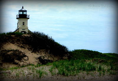 Photograph - North Light by Annie Babineau
