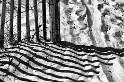Photograph - North Myrtle Beach Dune Lines Mono by John Rizzuto