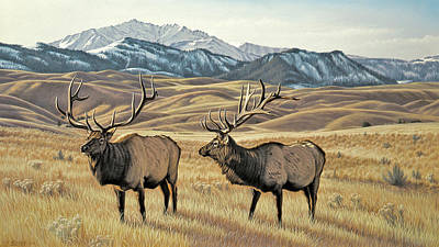 Elk Painting - North Of Yellowstone by Paul Krapf