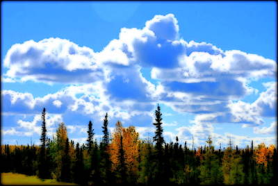 Photograph - North Pole Alaska  by Kathy Sampson