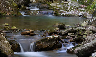 Photograph - North Prong Of Flat Fork Creek by Daniel Reed