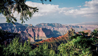 Have A Cupcake - North Rim by Stacy Abbott