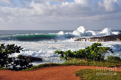 North Shore Oahu Art Print by Gina Savage