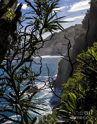 Photograph - North Shore by Ronald Lutz
