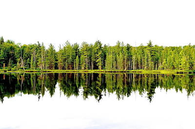 Photograph - North Tree Reflection by Brooke Friendly