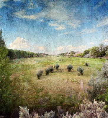 Epic Amazing Colors Digital Art - North Valley by Brett Pfister