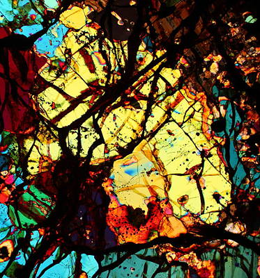 Thin Section Photograph - Mello Yellow by Hodges Jeffery
