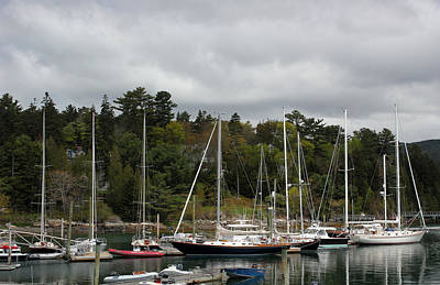 Photograph - Northeast Harbor Maine by Mary Bedy
