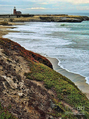 Photograph - Northern California Coast by Joan  Minchak
