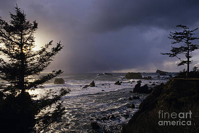 Northern California Coastline Art Print by Jim Corwin
