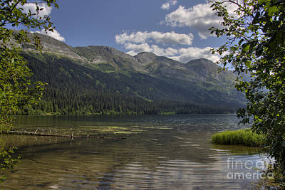 Photograph - Northern Canadian Rockies by Inge Riis McDonald