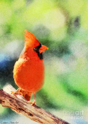 Photograph - Northern Cardinal With Leaf In Beak - Digital Paint II by Debbie Portwood