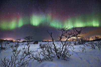 Northern Lights - Creative Editing Art Print