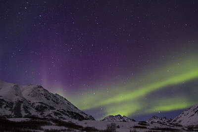 Photograph - Northern Lights by Doug Lloyd