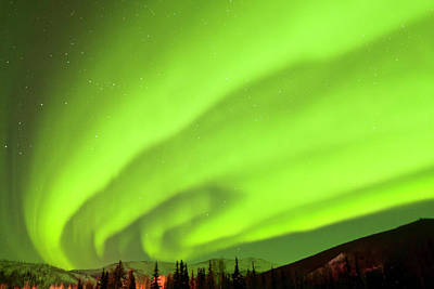 Photograph - Northern Lights Filling Night Sky by Danita Delimont