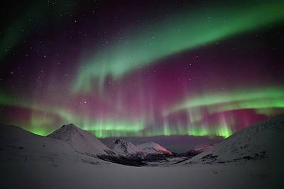 Photograph - Northern Lights by John Hemmingsen