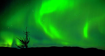 Photograph - Northern Lights Over Rural Landscape by Henn Photography