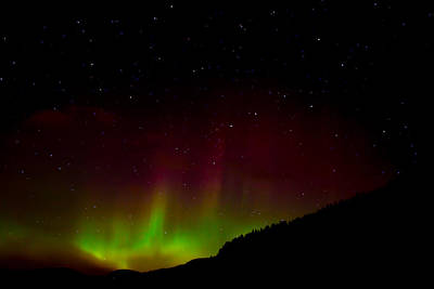Dipper Digital Art - Northern Lights With Big Bear by Sara  Jones
