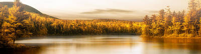 Photograph - Northern Maine by Bob Orsillo