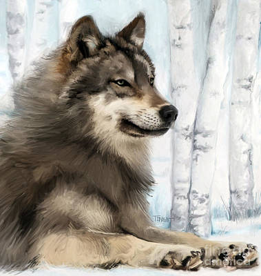 Province Mixed Media - Northern Rocky Wolf... by Mark Tonelli