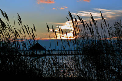 Photograph - Ocean City Sunset At Northside Park by Bill Swartwout