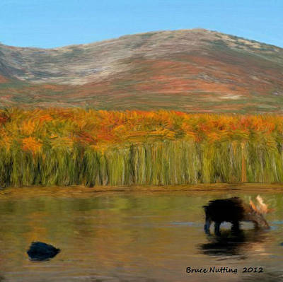Art Print featuring the painting Northwest Moose by Bruce Nutting