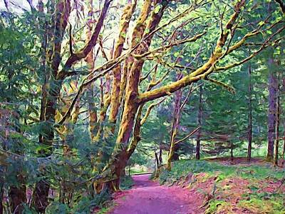 Olympic National Park Painting - Northwest Woods by Jenny Hudson