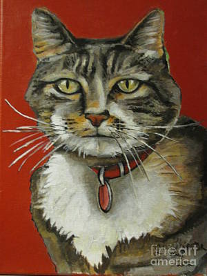 Painting - Norton - Cat by Grace Liberator