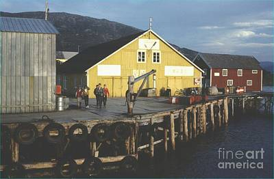 Norway Loray Island Art Print by Ted Pollard
