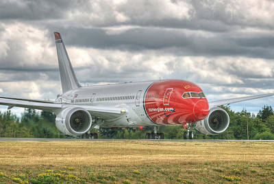 Norwegian 787 Art Print