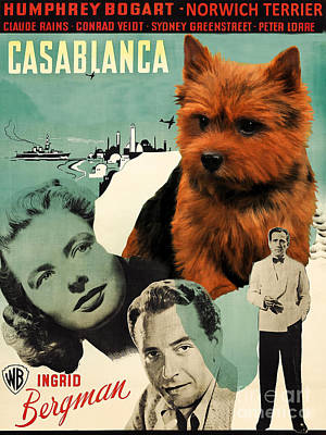Painting - Norwich Terrier Art Canvas Print - Casablanca Movie Poster by Sandra Sij