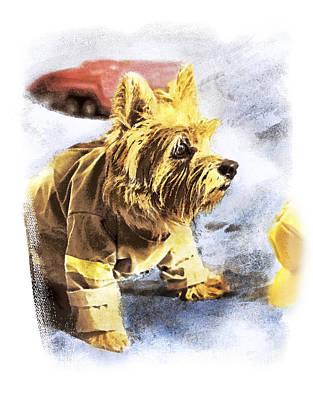 Terrier Digital Art - Norwich Terrier Fire Dog by Susan Stone