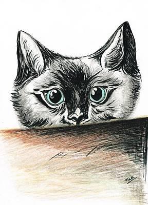 Cat- Nosey Boy Art Print by Teresa White