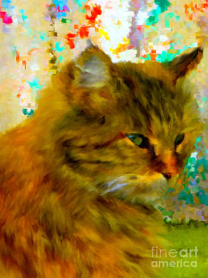Digital Art - Not Amused Colorful by Holley Jacobs