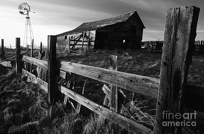 Photograph - Not Ok Corral by Bob Christopher