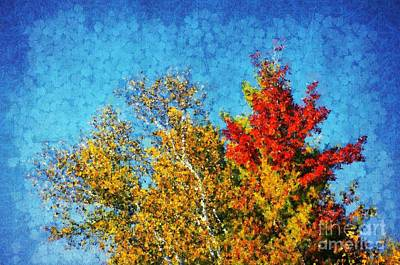 Variation Photograph - Not Only Some Other Autumn Trees - 09 by Variance Collections