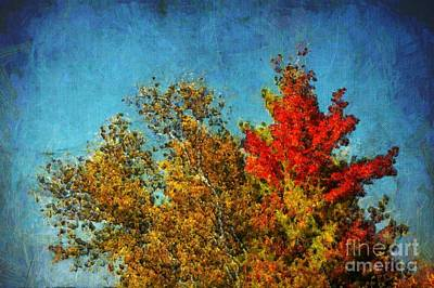 Red Leaf Digital Art - Not Only Some Other Autumn Trees - A03a by Variance Collections