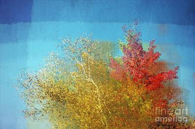 Not Only Some Other Autumn Trees - C02j01 Art Print