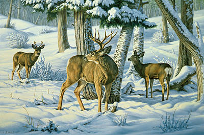 Yellowstone Painting - Not This Year - Mule Deer by Paul Krapf