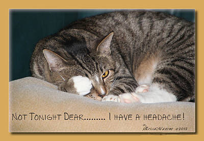 Not Tonight Dear ... Art Print by EricaMaxine  Price