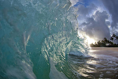 Water Photograph - Coconut Curl by Sean Davey