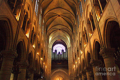 Photograph - Notre Dame Ceiling by Crystal Nederman